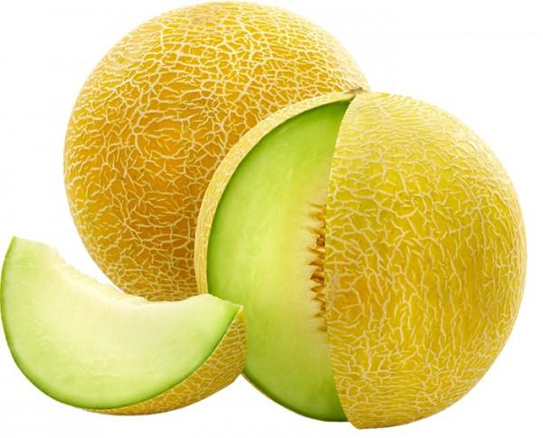 Galia-Melon-germany-import-company