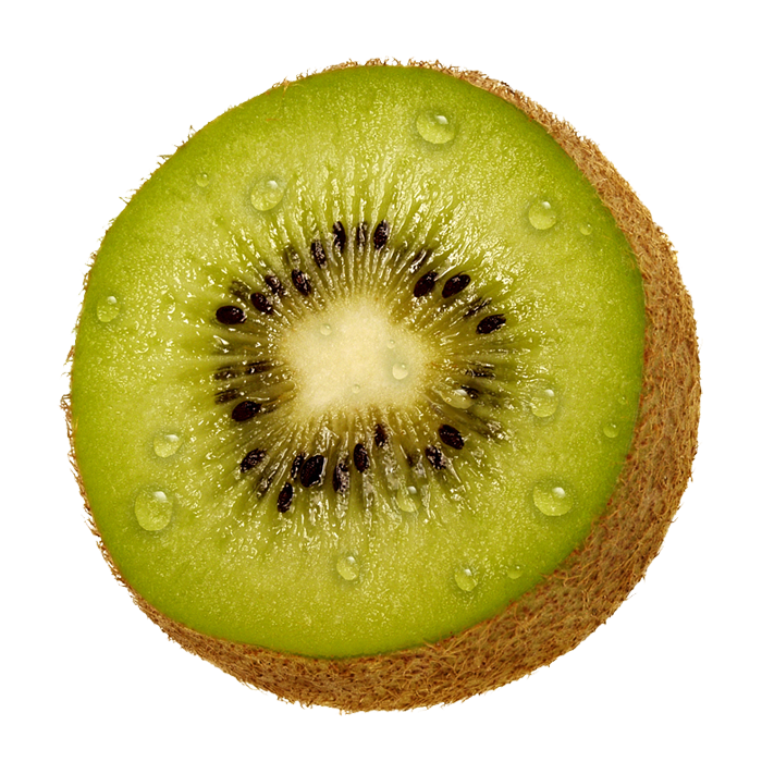 Kiwi bird cut open - photo#22