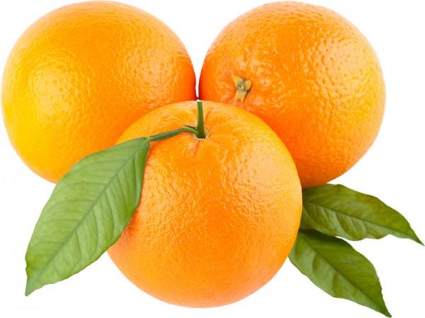 Orange-export-import-EU