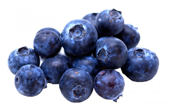blueberry-germany-export