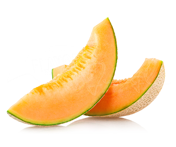 cantaloupe-MELON-germany-export-import