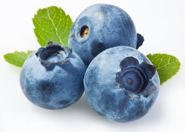 export-import-bluberries