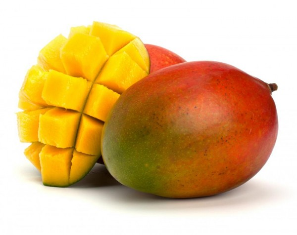 export-import-mango-germany