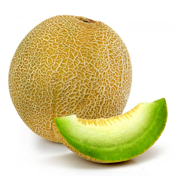 galia-melon-import
