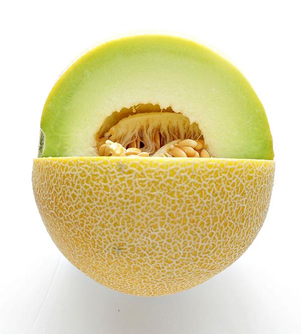 galia-melon-import-export