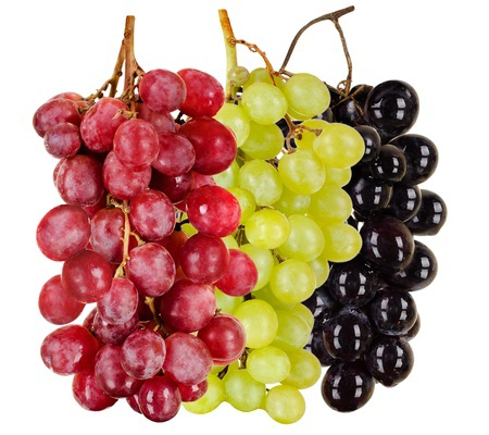 grapes-import-germany
