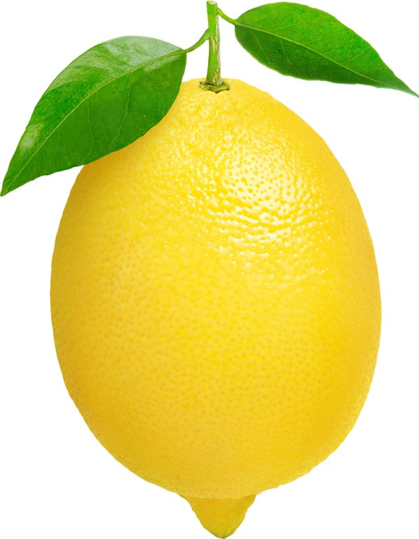 lemon-import-germany-export