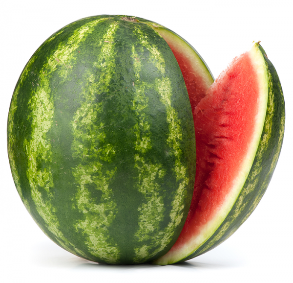 watermelon-international-export-import